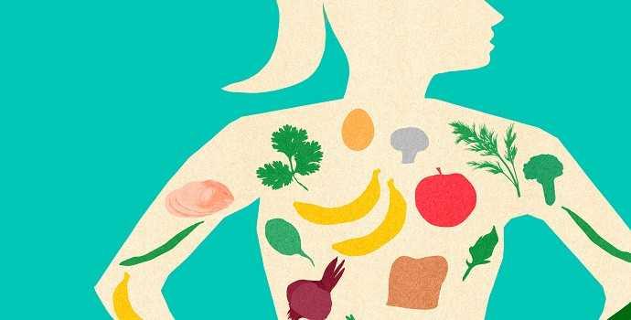 Materi, Fungsi, Contoh, Proses Dan Pengertian Metabolisme Menurut Para Ahli