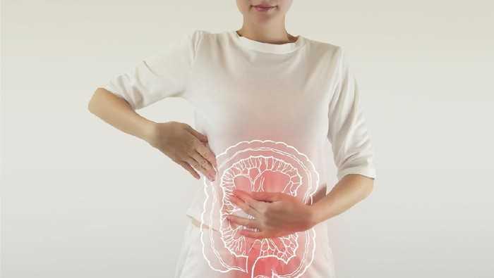 Penyebab, Gejala, Pengobatan Dan Pencegahan Penyakit Pada Sistem Pencernaan
