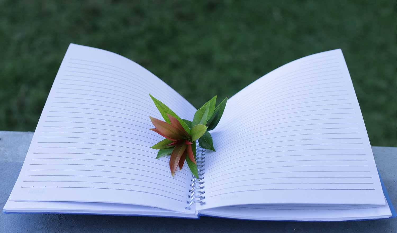 Unsur Unsur, Struktur, Klasifikasi, Fungsi, Contoh Dan Pengertian Teks Cerita Fiksi Menurut Para Ahli
